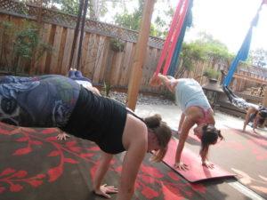 TYS® Aerial Yoga Teacher Training